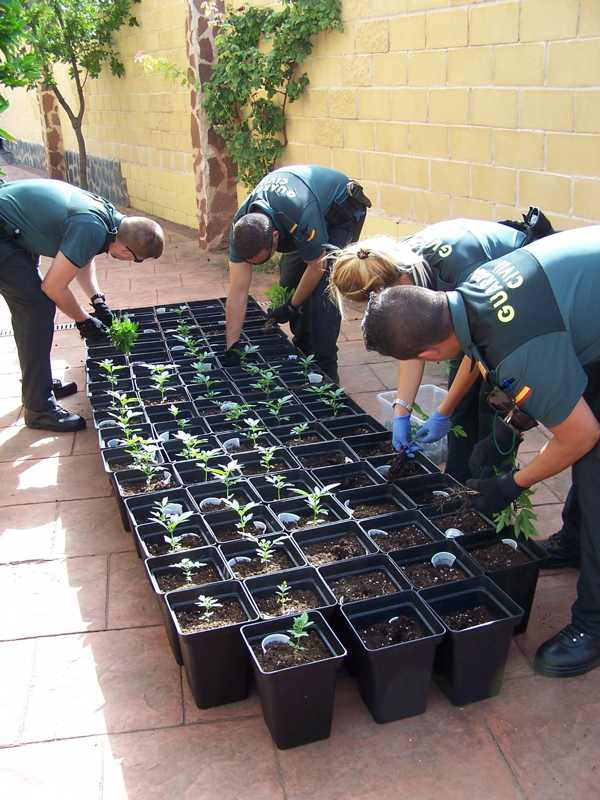 Foto cedida por Guardia Civil